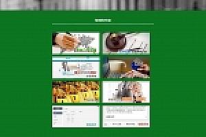 绿色金融股票网站织梦dede模板源码下载[带手机版数据同步]